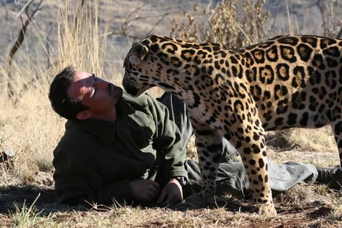 File:Kevin Richardson next to a jaguar.jpg