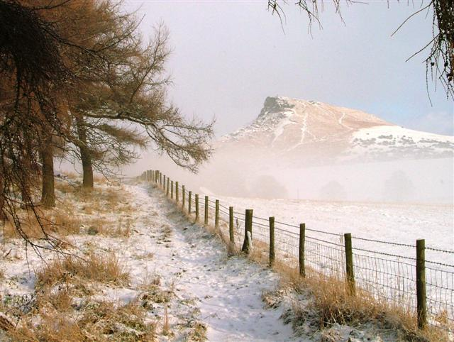 File:Path to Roseberry - geograph.org.uk - 99748.jpg