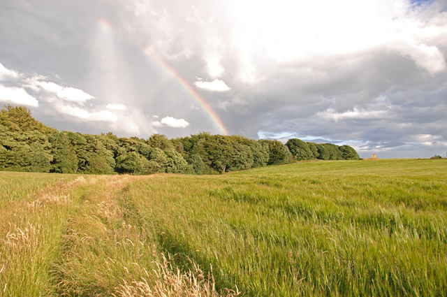 Rainbow over Billinge Plantation - geograph.org.uk - 878758