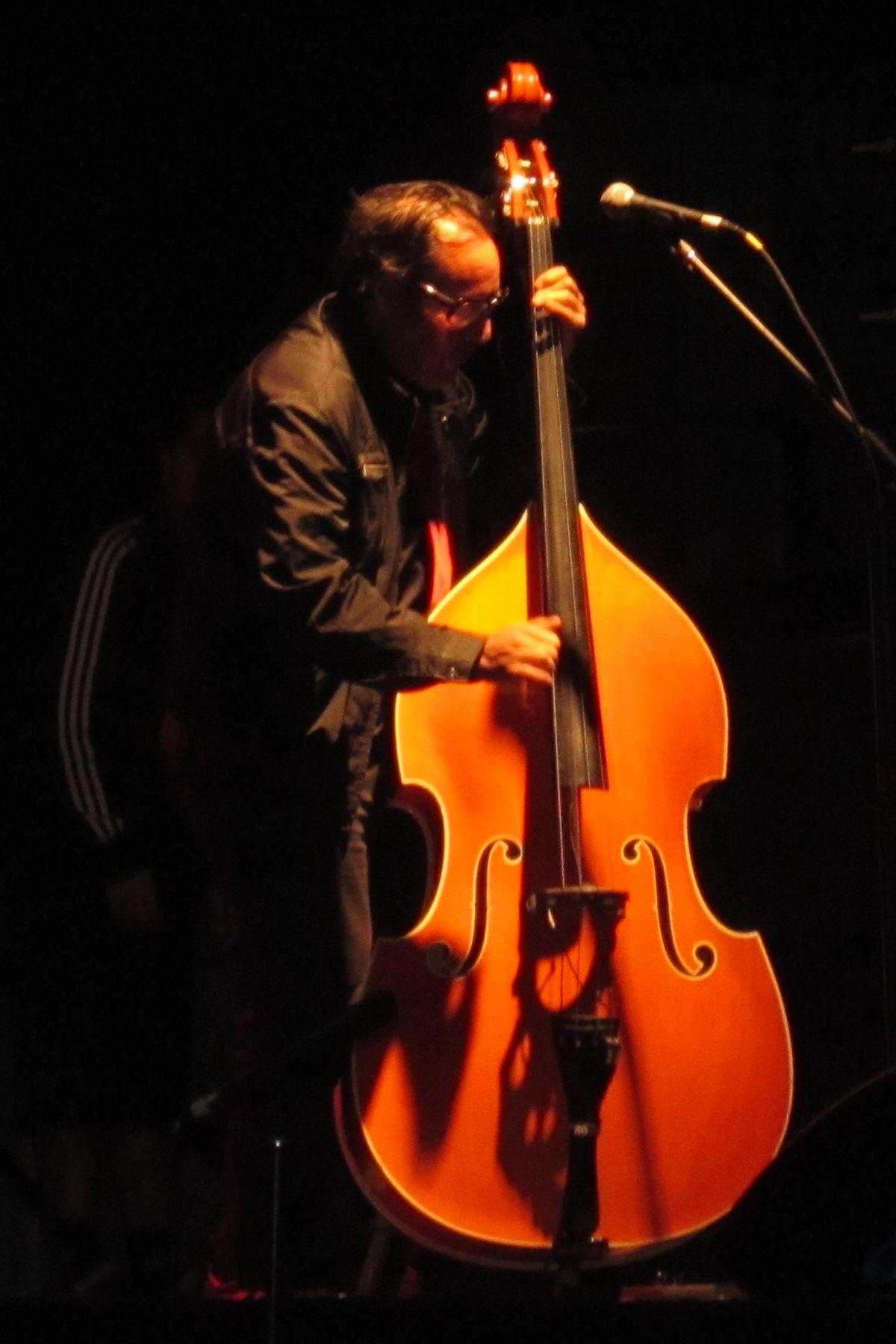 Roberto Lindl durante un concierto de Los Tres en 2012.