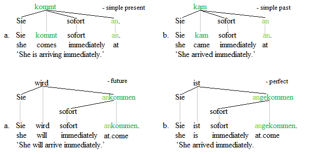 Separable verbs trees 1