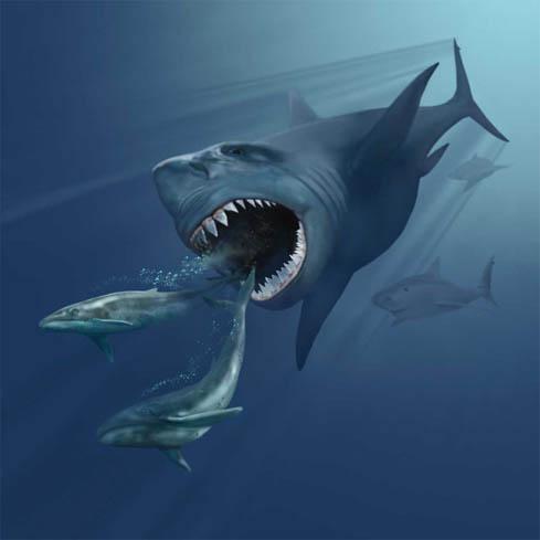 20 metrový žralok karcharodon