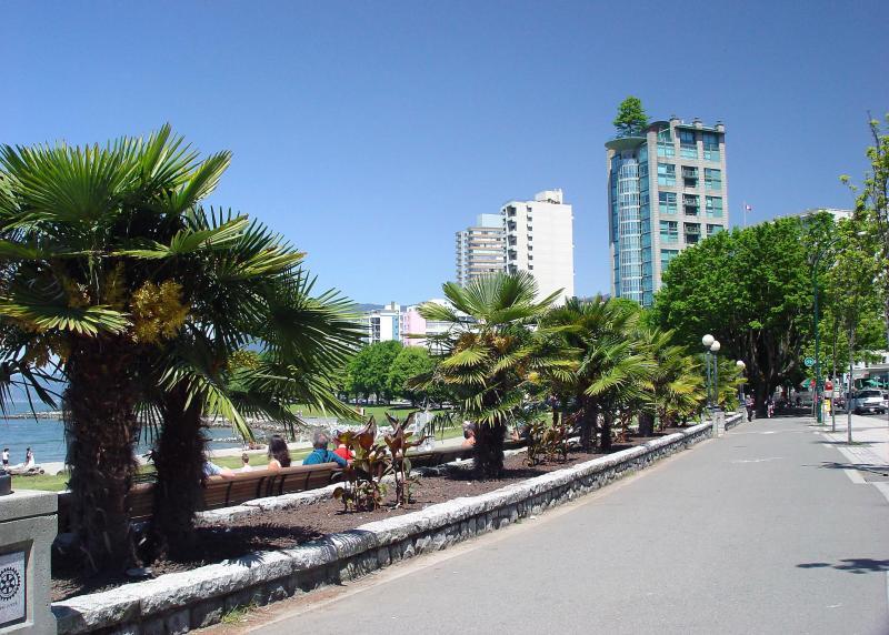 Пальмы Ванкувера