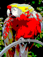 Windows 20colors palette sample image.png