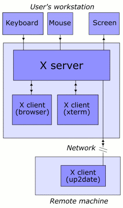 In this example, the X server takes input from a keyboard and mouse and displays to a screen. A web browser and a terminal emulator run on the user's workstation, and a system updater runs on a remote server but is controlled from the user's machine. Note that the remote application runs just as it would locally.