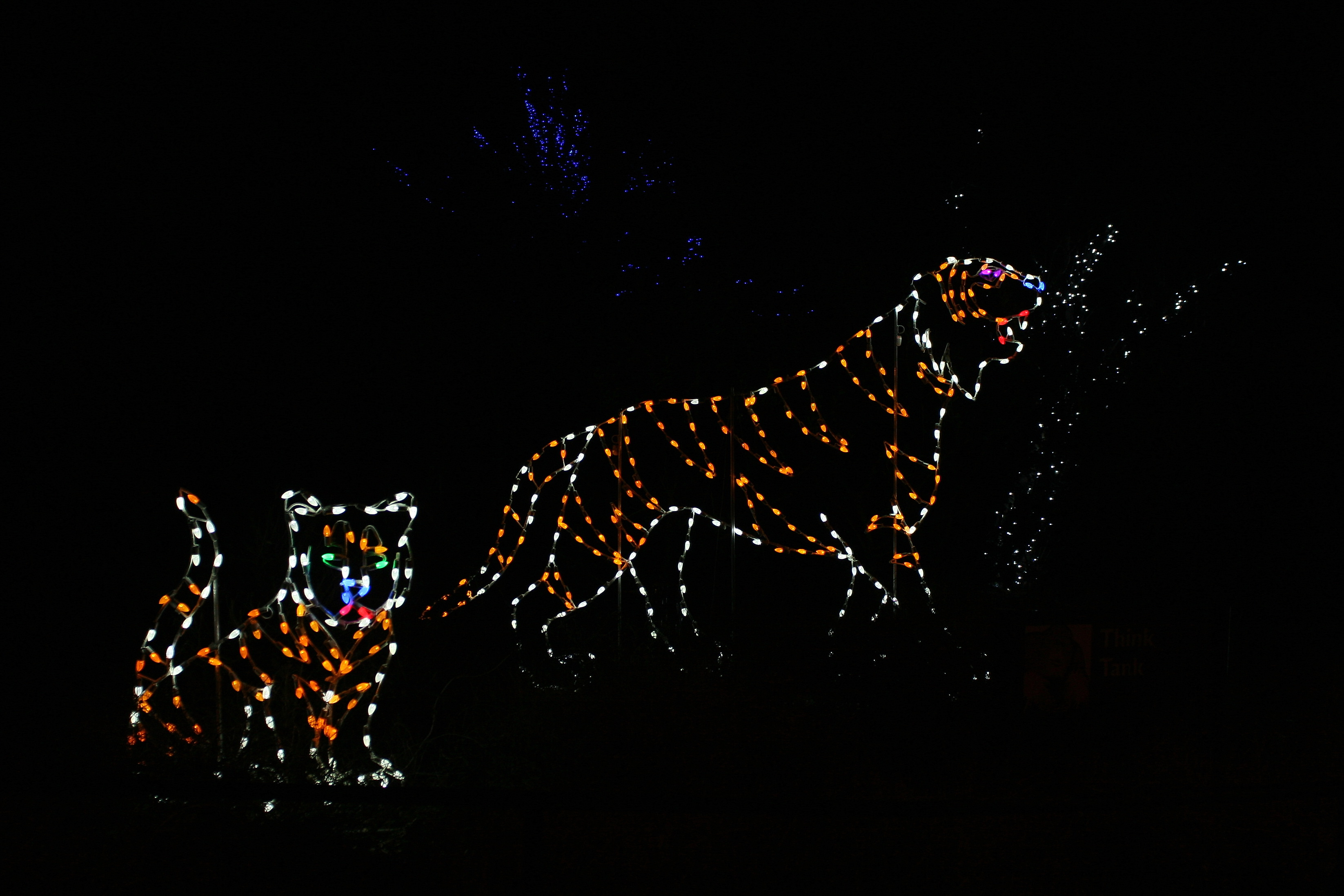 File Zoolights 2010 Holiday Lights At The National Zoo