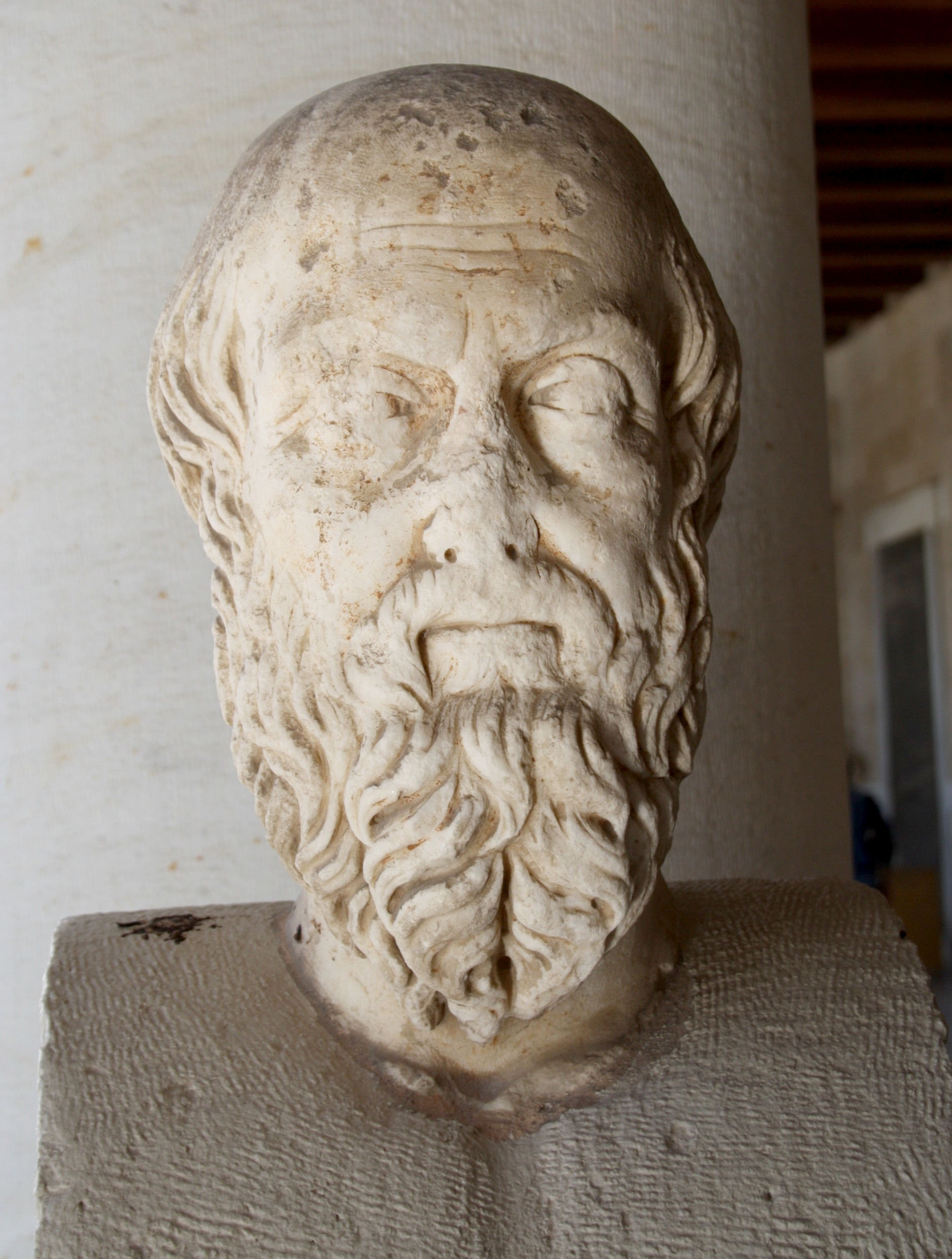 Amazon Greek Letters Diverse Woodworking