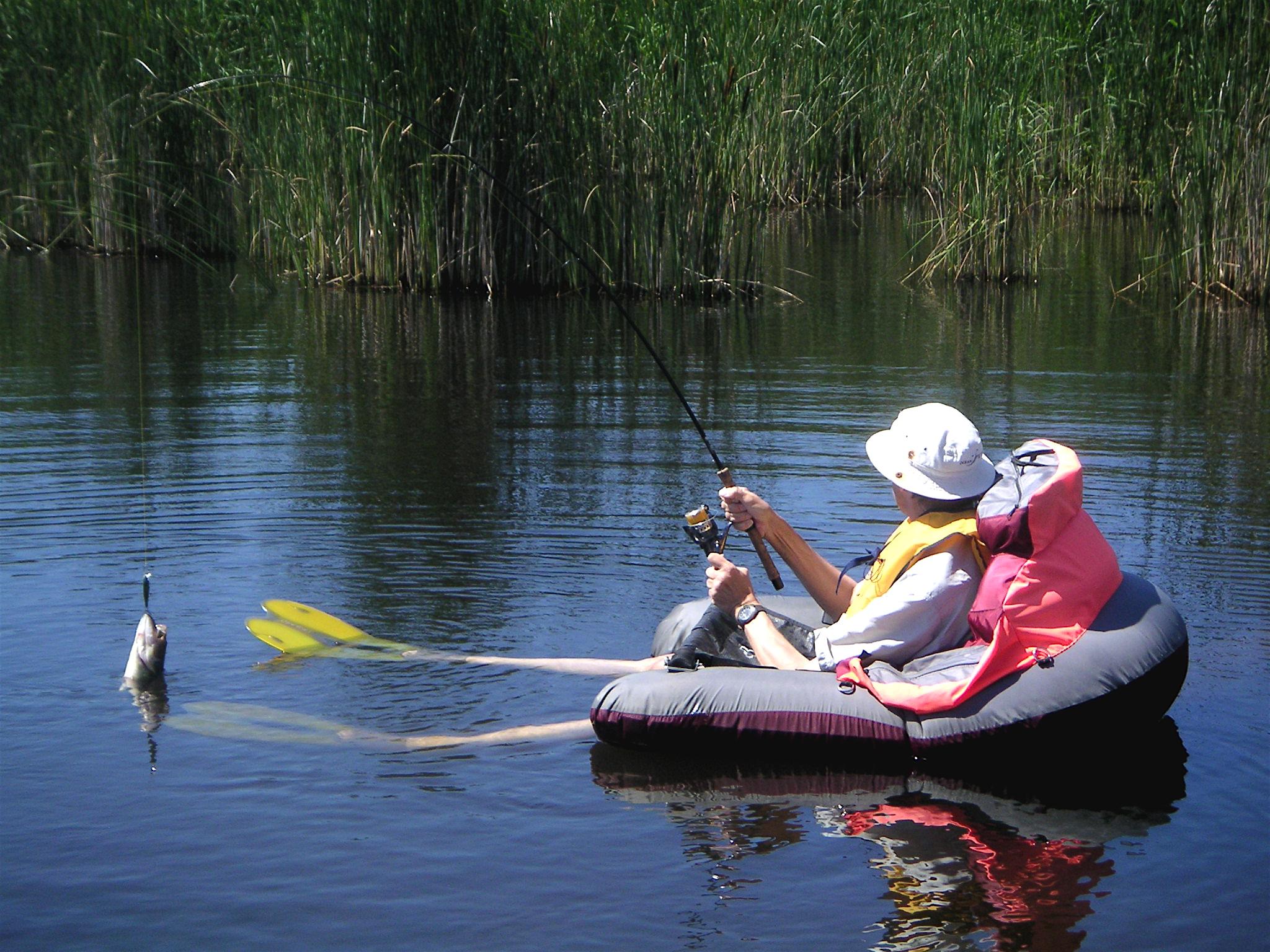 File black bass float tube jpg wikipedia for Belly boat fishing