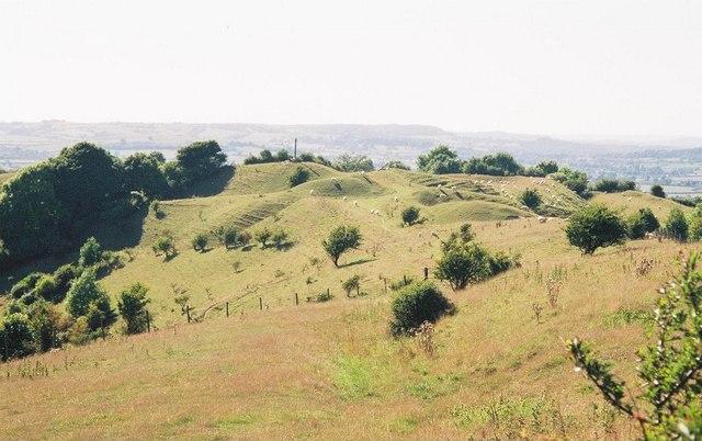 Billowy slopes of Bulbarrow Hill - geograph.org.uk - 502845
