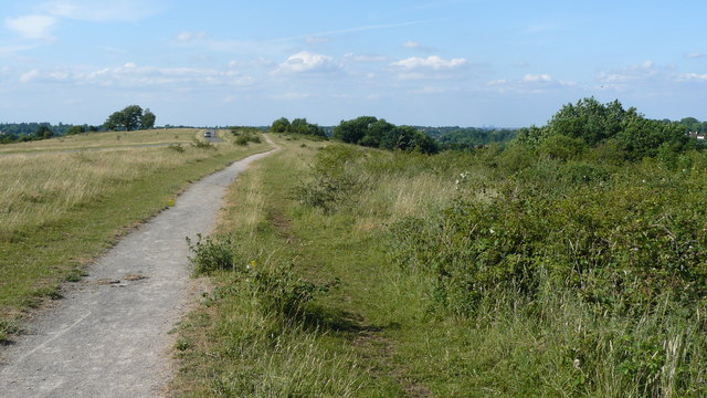Bridleway on Farthing Downs - geograph.org.uk - 1387697