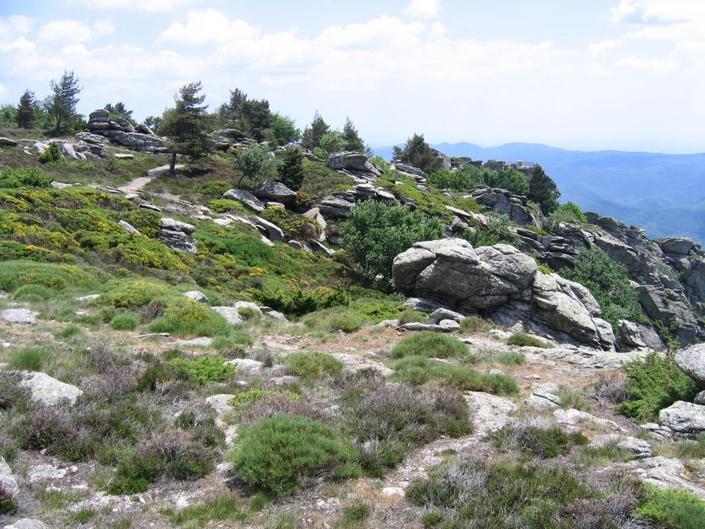 région languedoc