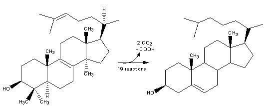 Resim:Cholesterol-Synthesis-Reaction14.png