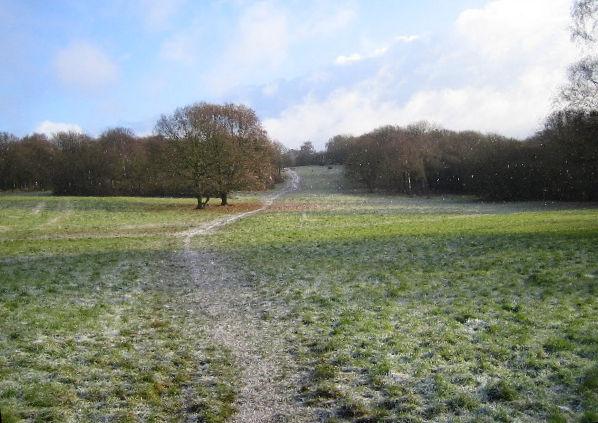 Chorleywood Common with light snow