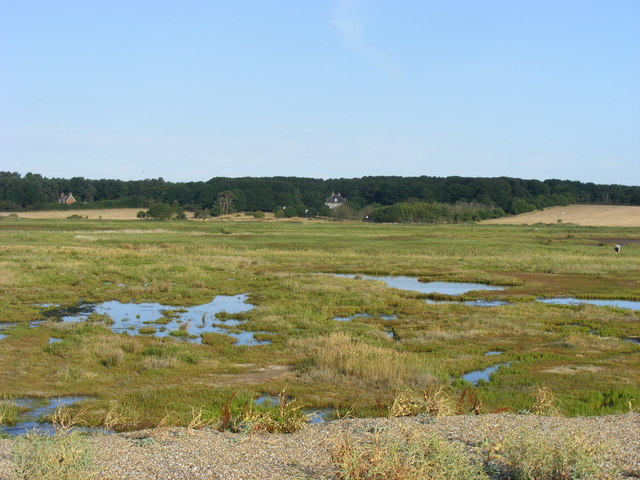 Dingle Marshes - geograph.org.uk - 1459477