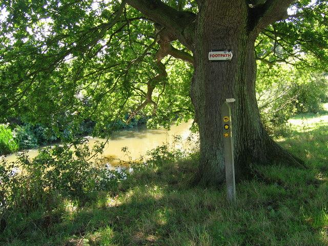 Eden Valley Walk alongside the River Medway - geograph.org.uk - 227546