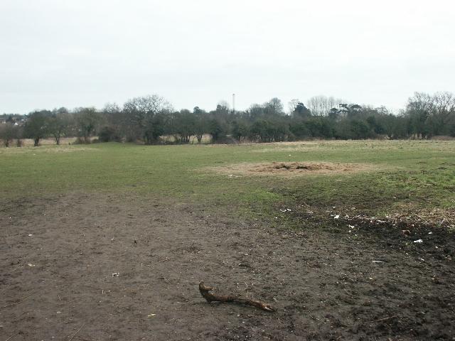 Fields, Costessey - geograph.org.uk - 120419