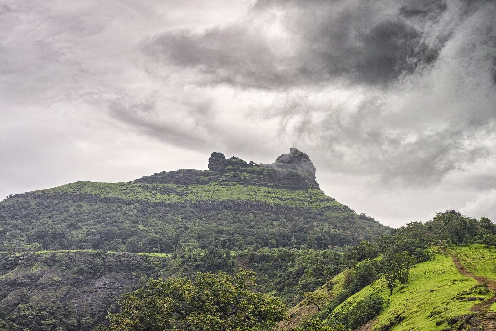 Bhanu1313