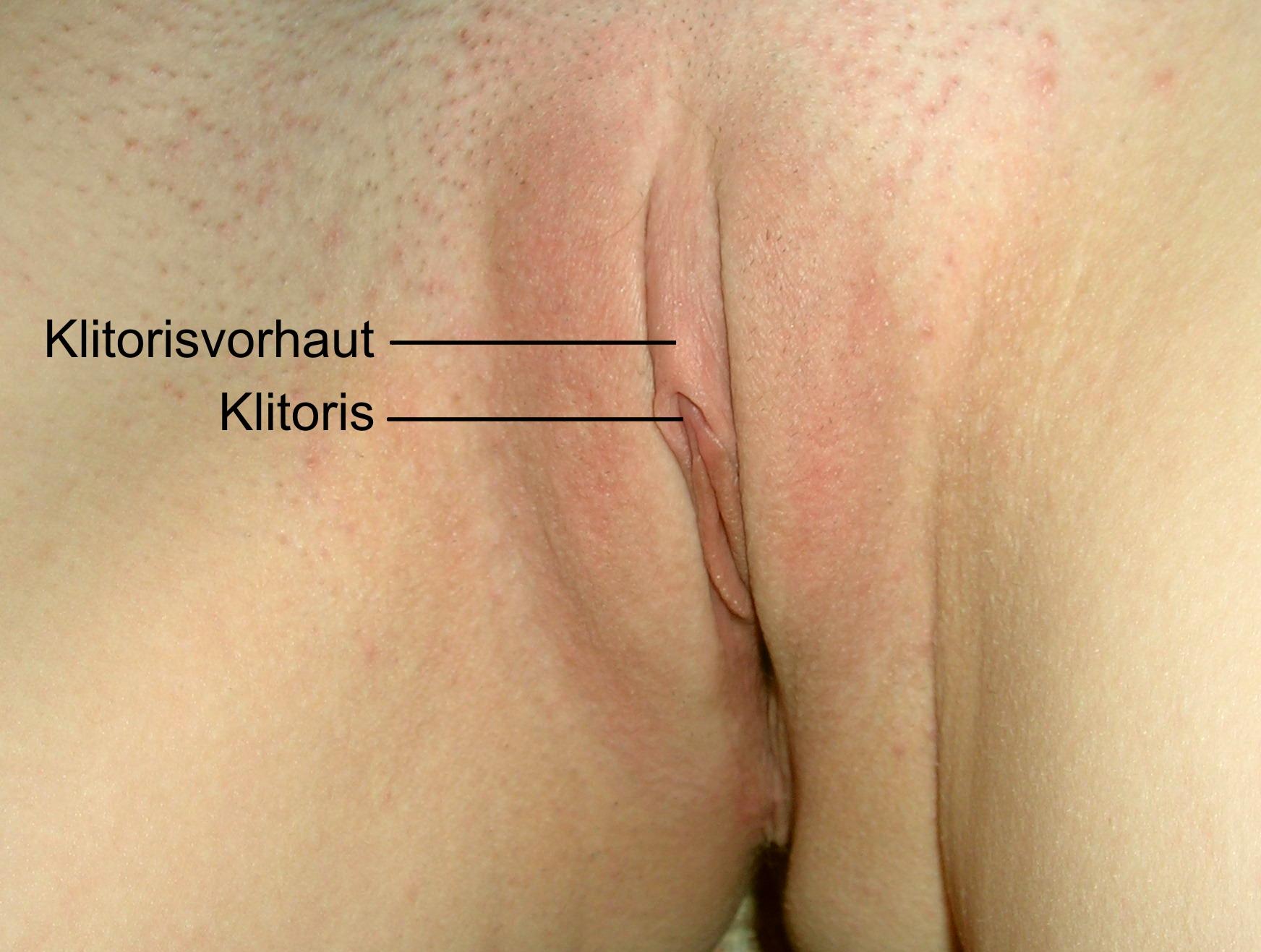 klitoris gratis pografi