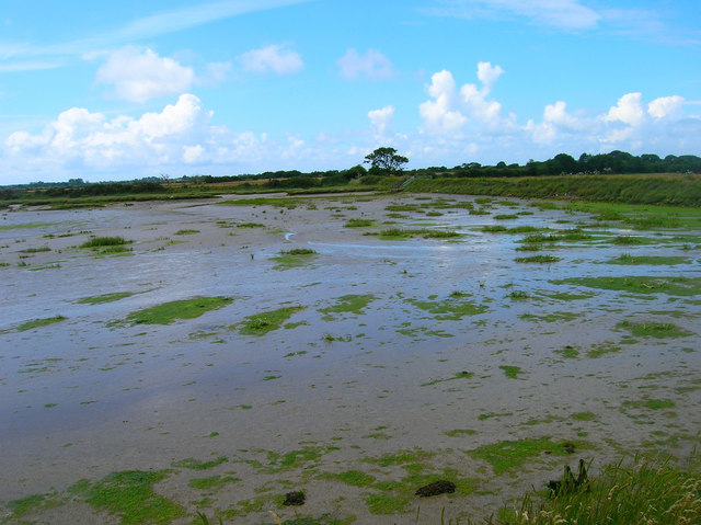 Pagham Harbour - geograph.org.uk - 501464