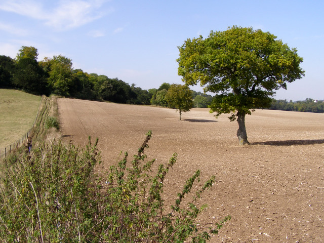 Ploughed field on Ashley Down - geograph.org.uk - 236922