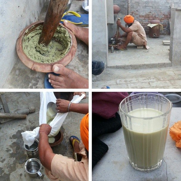 rocess of making bhang / cannabis lassi