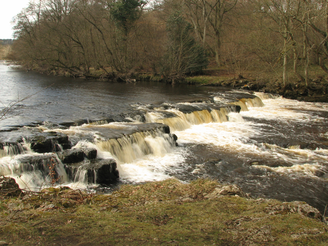 Redmire Force. - geograph.org.uk - 155131