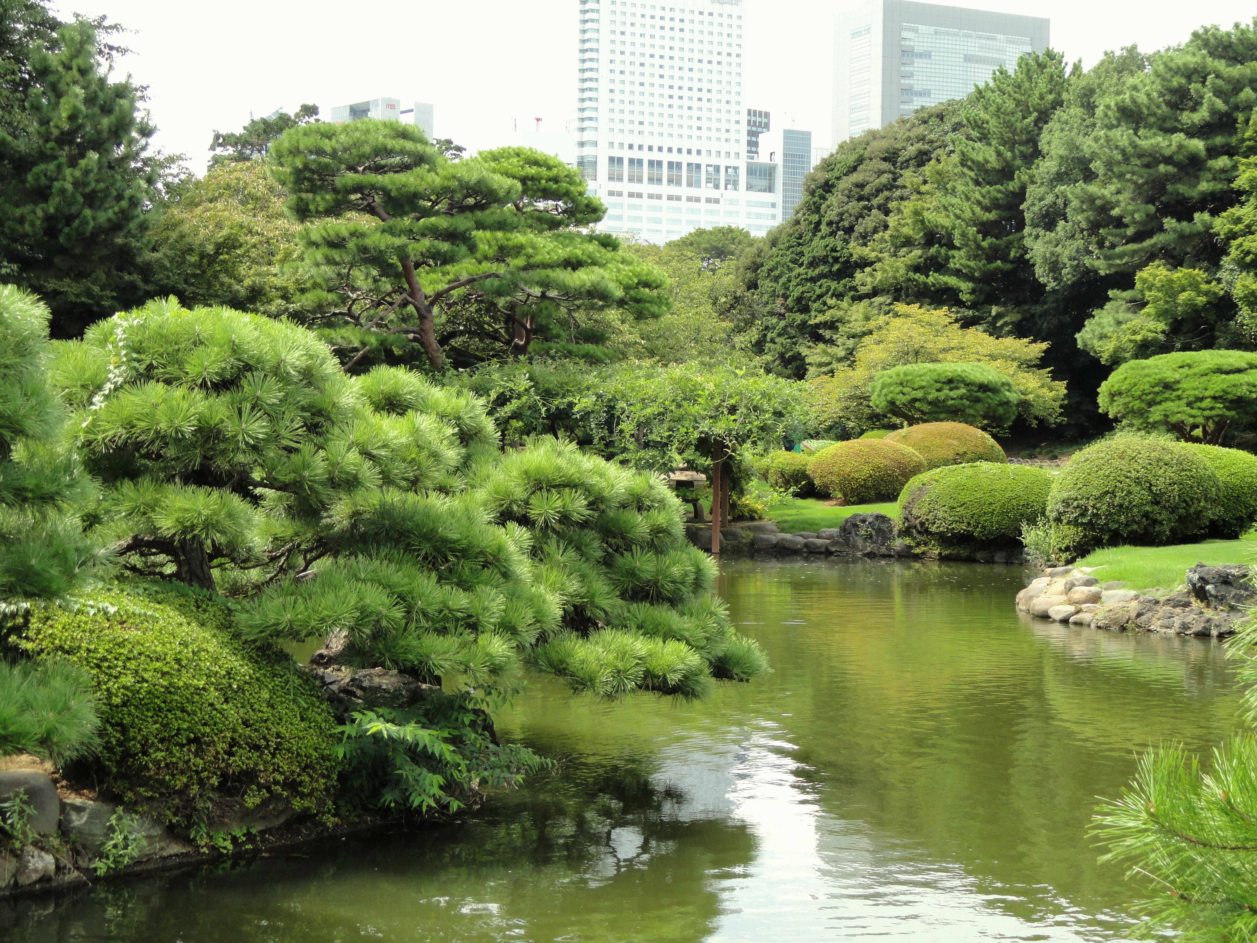 File:Shinjuku Gyoen National Garden - DSC05103.JPG - Wikimedia Commons
