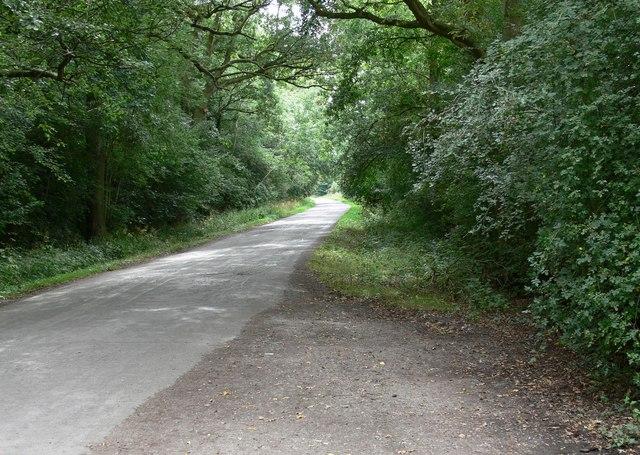 Smithy Lane at Burbage Wood