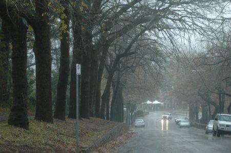 File:Strl druids avenue rain.jpg