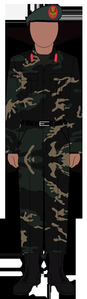 Tanzanian Armed Forces Uniform - Wikipedia