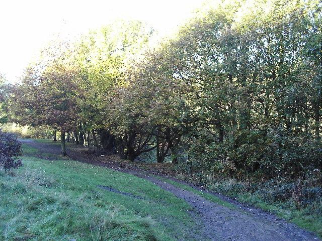 Troydale - geograph.org.uk - 76254