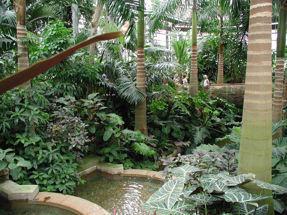 Delicieux File:US Botanic Garden 2