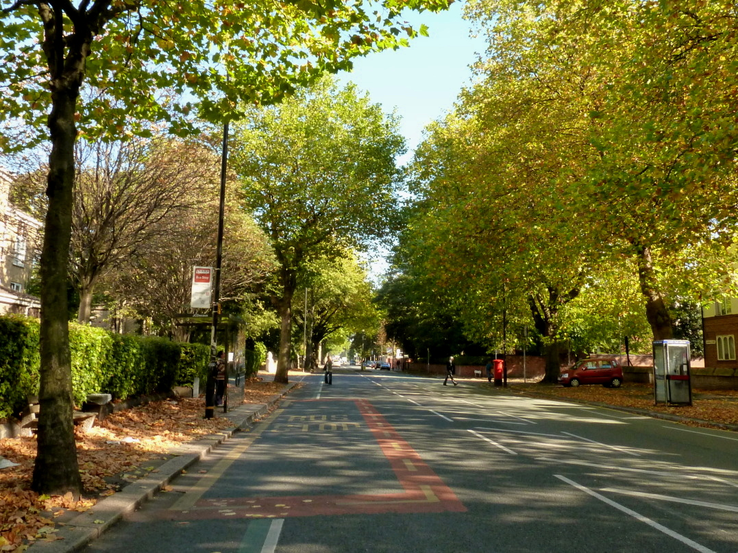 Upper_Chorlton_Road_in_the_autumn.jpg