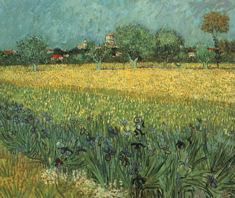 A field with flowers, various plants and trees in front of a several buildings (some of which are either tall or on a hill).