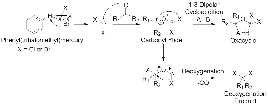 Scheme 5. α-Halocarbonyl Ylide Synthesis via Dihalocarbene Intermediates. Modified from Padwa, A.; Hornbuckle, S. F. Chem Rev 1991, 91, 263.