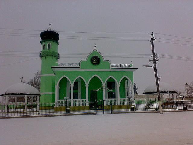 Снегоуборщики село Алтуд Снегоуборщики Куменский район