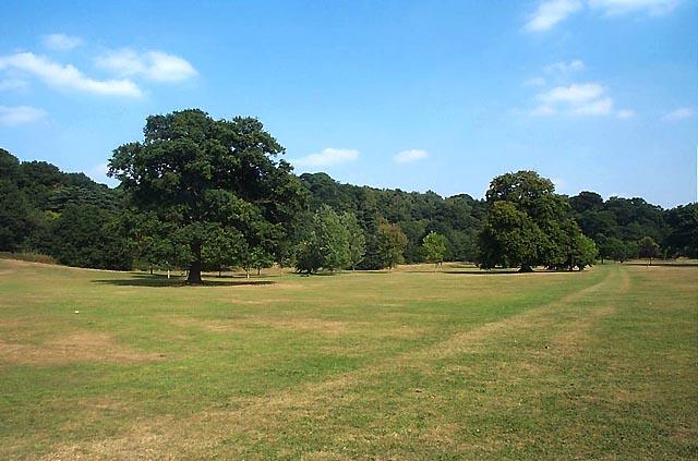 File:Bramcote Hills Park - geograph.org.uk - 17663.jpg