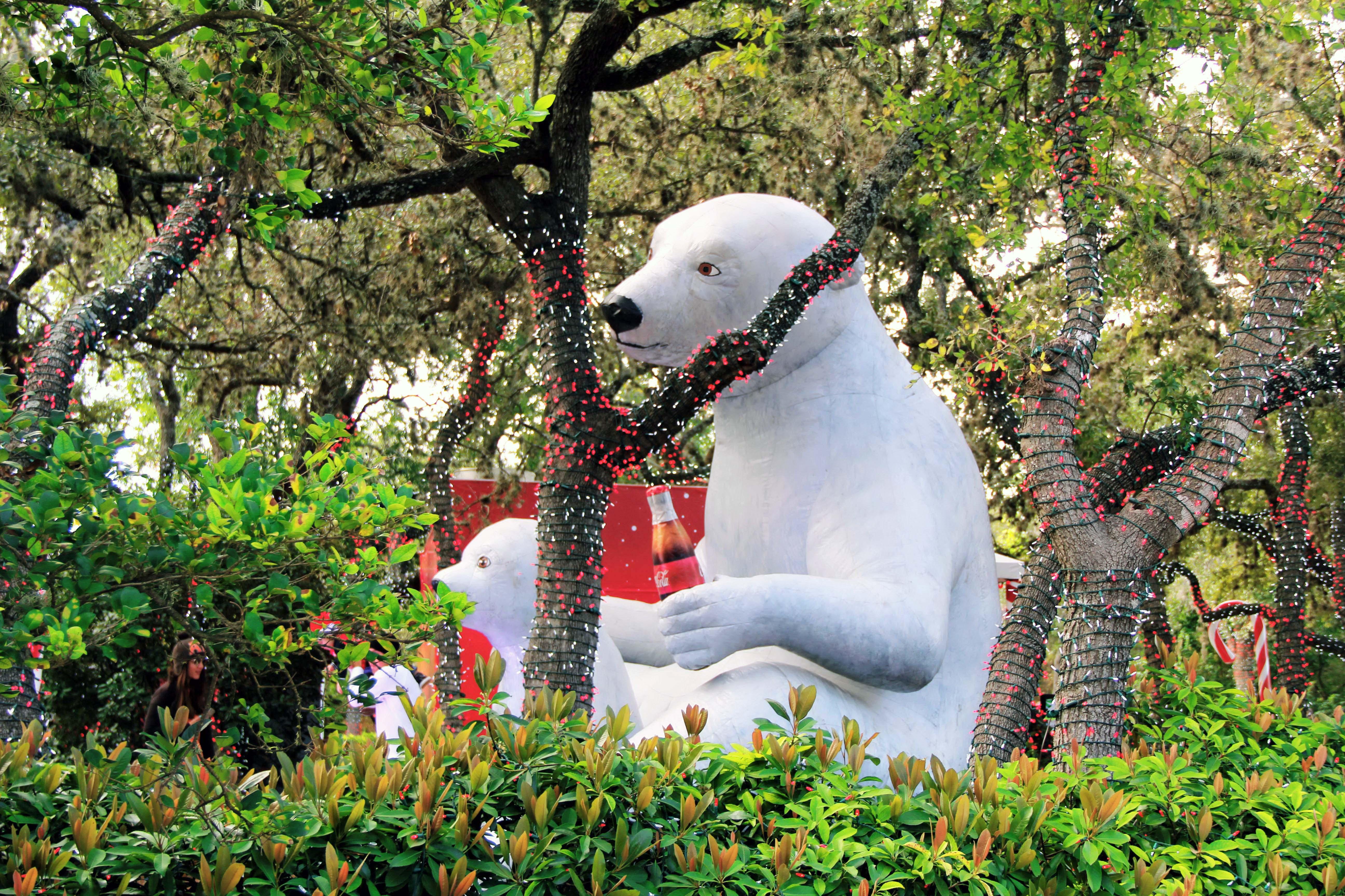 filechristmas light and polar bearjpg