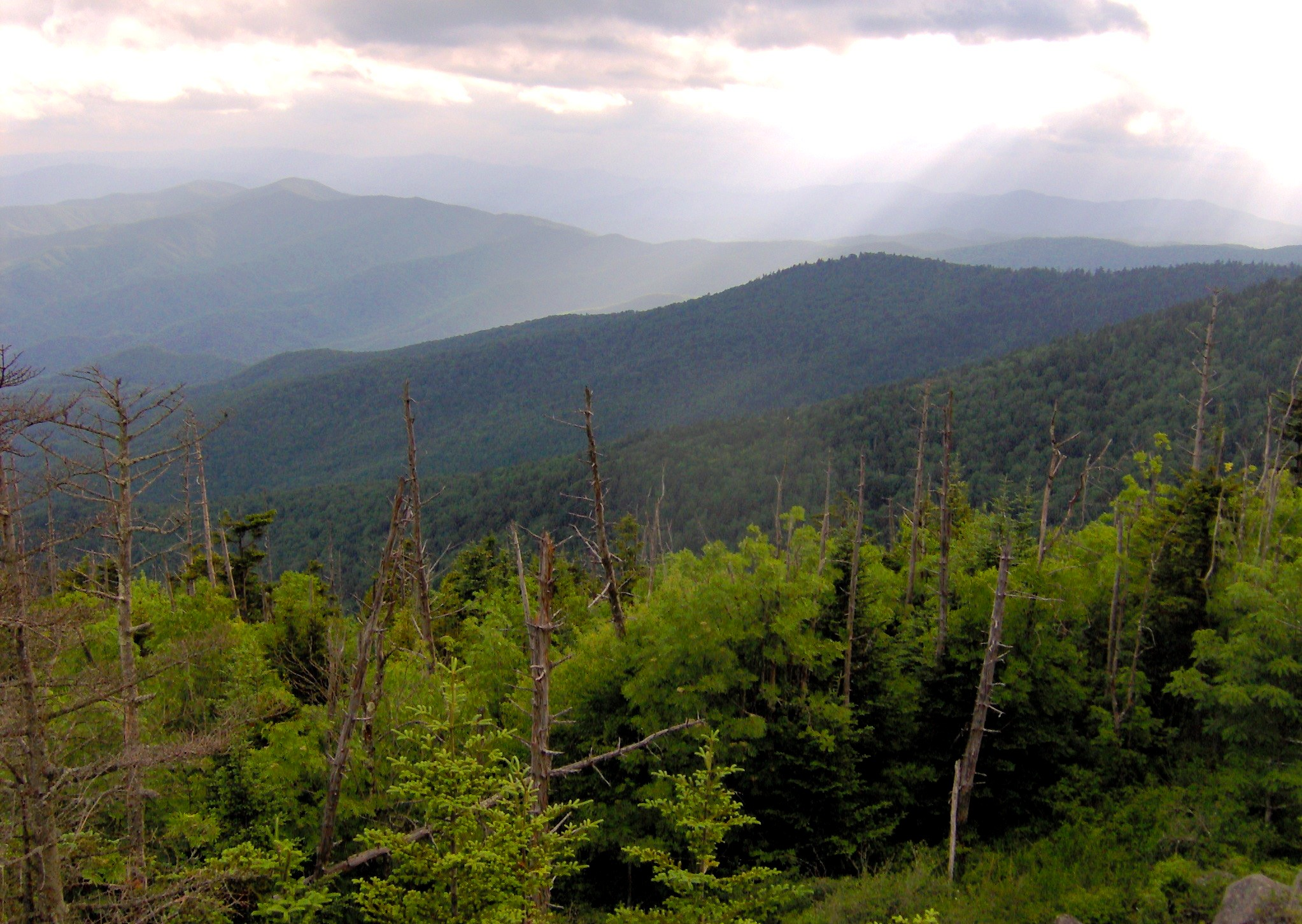 smoky mountains tennessee with File Clingmans Dome Southwest Tn1 on File Clingmans Dome View South Nc1 additionally Little Greenbrier  Great Smoky Mountains also Ober Gatlinburg besides Lure also Watch.