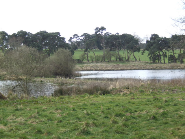 Cockley Cley Lakes - geograph.org.uk - 396440