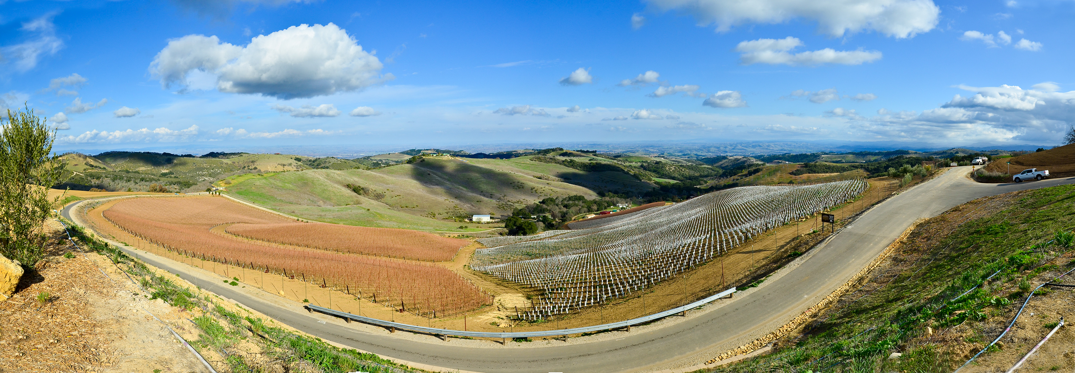 Paso Robles California >> File Daou Vineyards Paso Robles California Usa Feb 2012 Jpg
