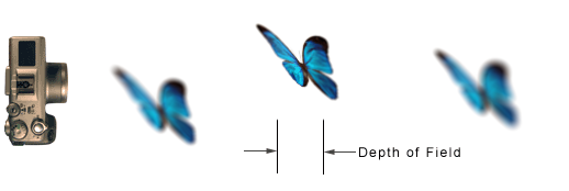 Depth of field diagram.png