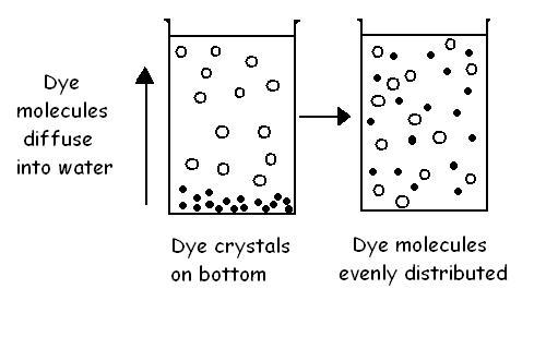 Diffusion in a liquid.JPG