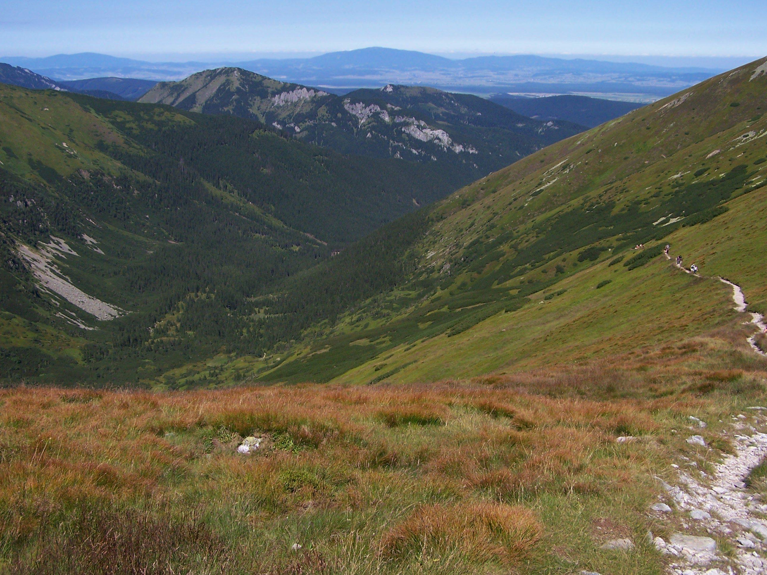 Górne partie Doliny Starorobociańskiej, fot. Jerzy Opioła, źródło: Wikimedia, GNU