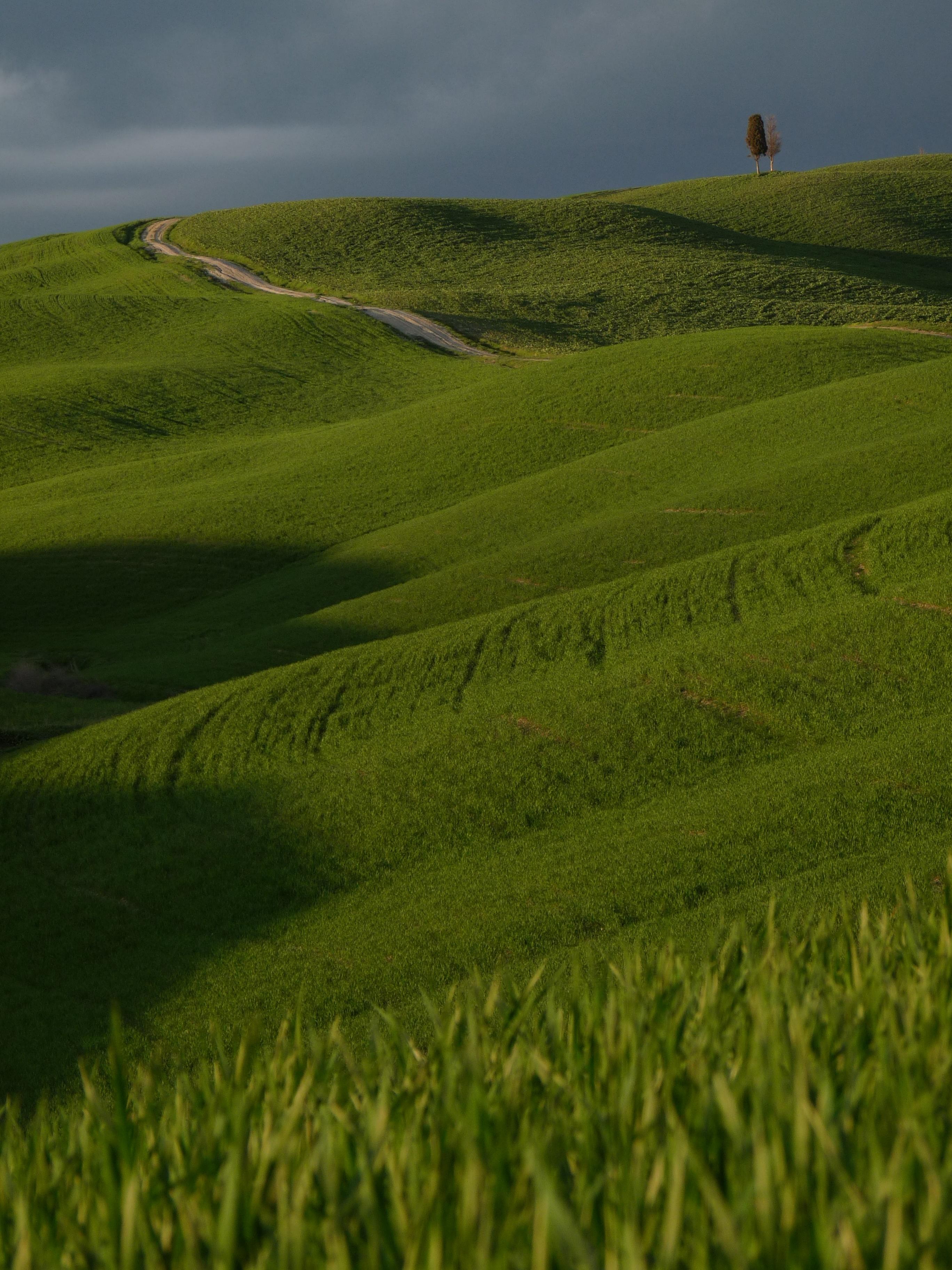 Flickr - lo.tangelini - Poesia Toscana.jpg