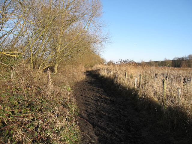 Footpath from Staines Moor to Stanwell Moor - geograph.org.uk - 1659569