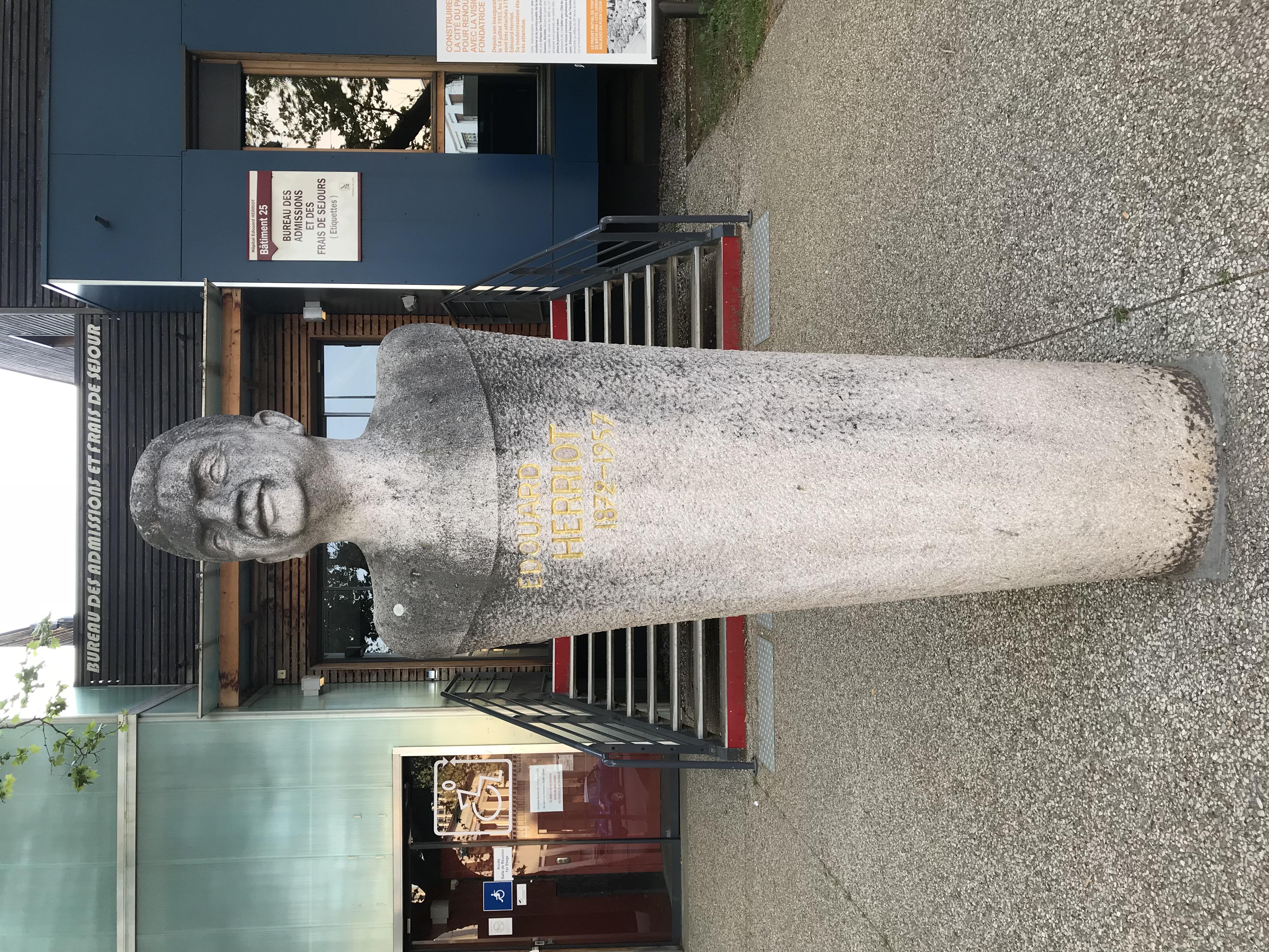 File:hôpital Édouard herriot lyon buste dÉdouard herriot 1.jpg