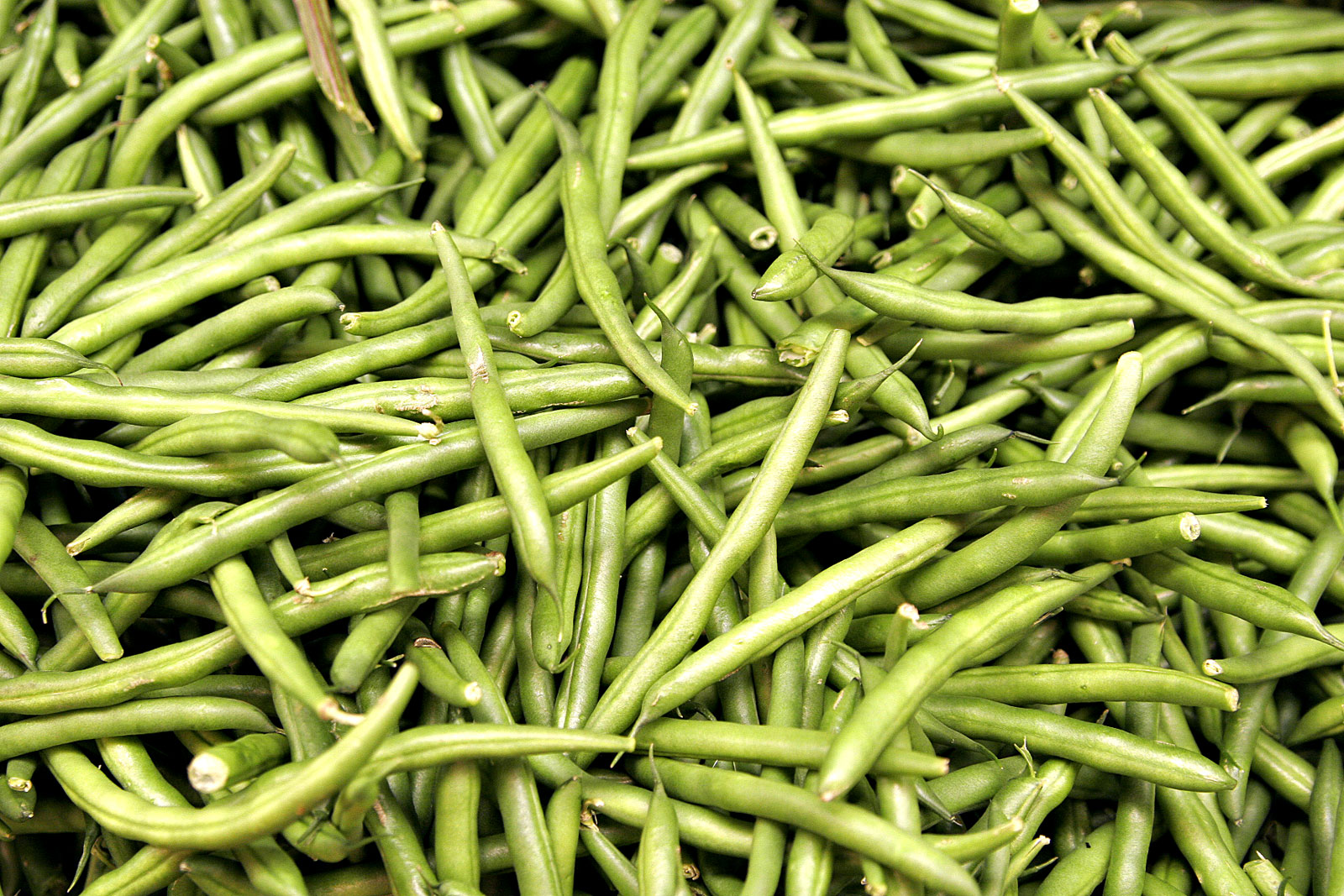 image of green bean