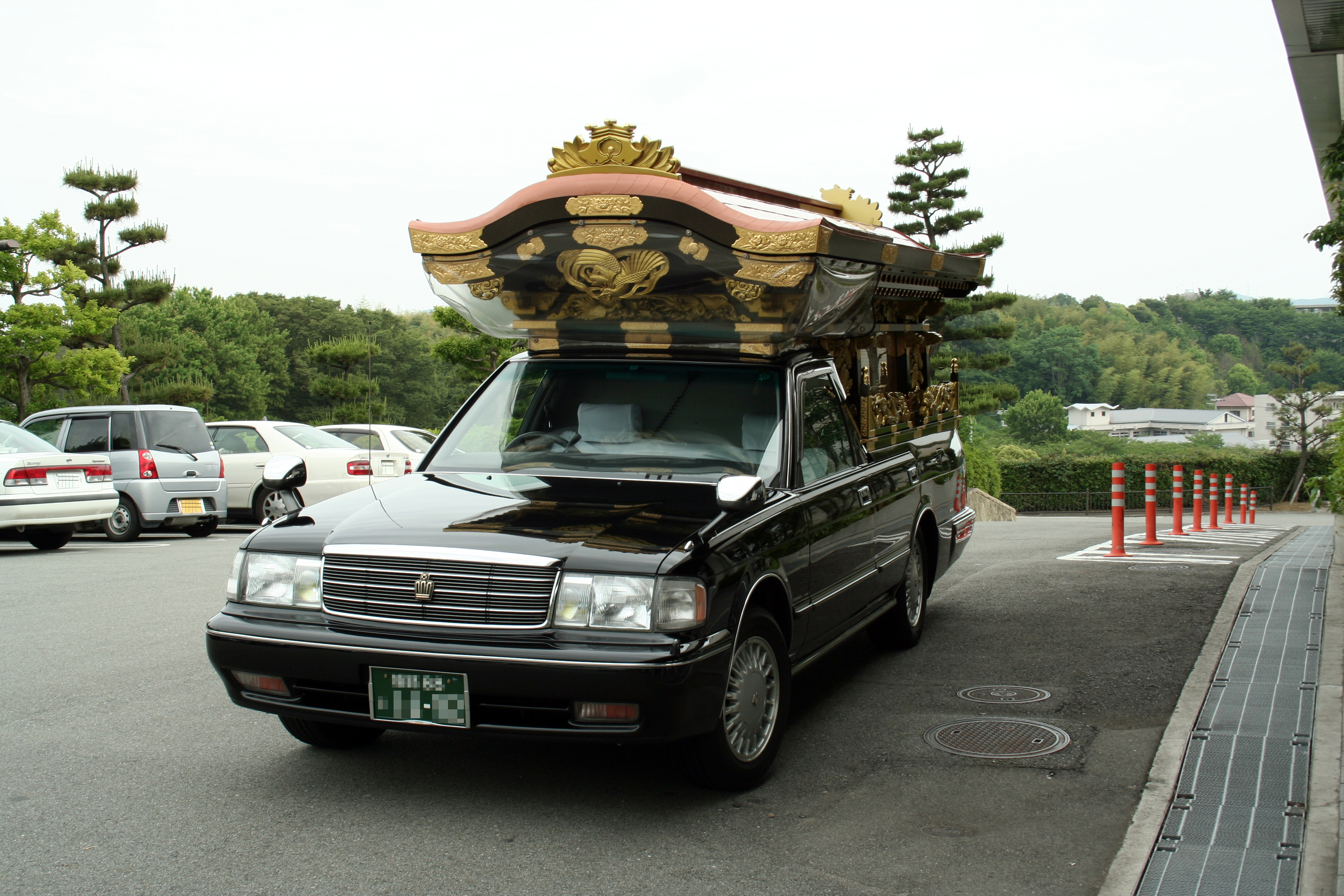 Hearse Cars For Sale In Usa