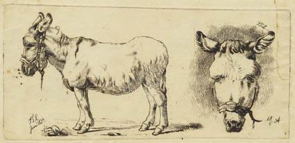 File:Johan Thomas Lundbye - Et æsel, plaget af fluer og et æselhoved set forfra.jpg